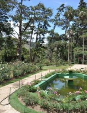 jardins.JPG