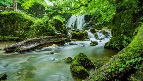 tourisme-nature.JPG